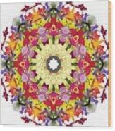 Abundantly Colorful Orchid Mandala Wood Print
