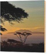 Acacia Land Wood Print