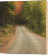Acadia Backroads Wood Print