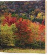 Acadia Colors Wood Print