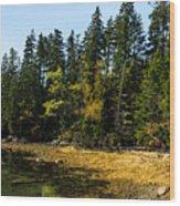 Acadia Cove Wood Print