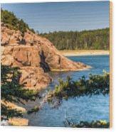 Acadia National Park Rocky Shoreline Wood Print