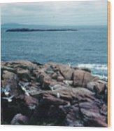 Acadia Park Maine Coast Wood Print