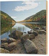 Acadia Scenery Wood Print by Alexander Mendoza