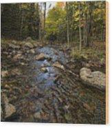 Acadia Waterscape Wood Print
