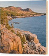 Acadian Cliffs In Autumn 1 Wood Print by Susan Cole Kelly