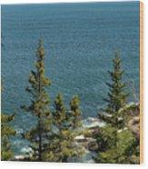 Acadia's Atlantic Wood Print