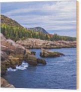 Acadia's Coast Wood Print