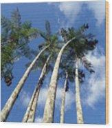 Acaizal Wood Print