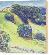 Acalanes Ridge, Lafayette, Ca Wood Print