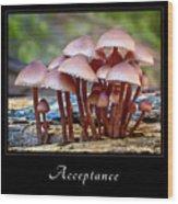 Acceptance 4 Wood Print