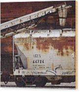 A C F X 44724 Wood Print
