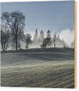 Acomb Misty Day Wood Print