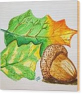 Acorn And Leaves Wood Print