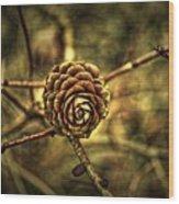 Single Tree Cone At Dusk Wood Print
