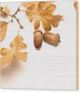 Acorns And Oak Leaves Wood Print by Utah Images