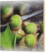 Acorns Wood Print