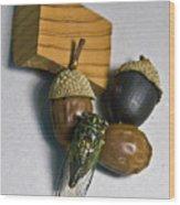 Acrons And Cicada Wood Print