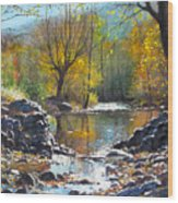 across Bulgaria 8 Wood Print by Stoian Pavlov