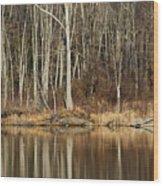 Across Skymount Pond - Autumn Browns Wood Print