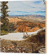 Across The Canyon Wood Print