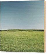Across The Field Wood Print