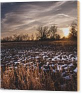 Across The Frozen Fields  Wood Print