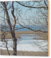 Across The Marsh To Woodneck Beach - Cape Cod Wood Print