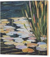 Across The Pond Wood Print