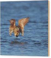 Across The Water Wood Print