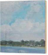 Across Winona Wood Print