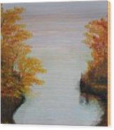 Acrylic Msc 064 Wood Print