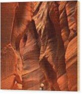 Adam Jewell In Buckskin Slot Canyon Wood Print