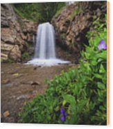 Adams Canyon Lower Falls Spring Wood Print