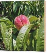 Adams County Peach Wood Print