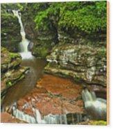 Adams Falls Landscape Wood Print