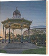 Adelaide Dusk Wood Print