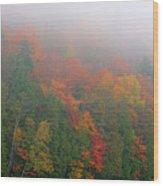 Adirondack Autumn Colors Wood Print