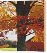 Adirondack Color Show Wood Print