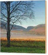 Adirondack Landscape 1 Wood Print