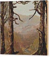 Adirondack Landscape Wood Print