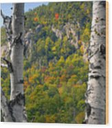 Adirondack Mountains New York Wood Print