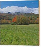 Adirondack Mountains, Upper State New Wood Print