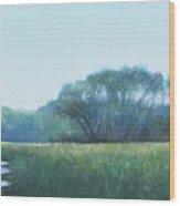 Adirondack Trail Wood Print