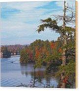Adirondack View Wood Print