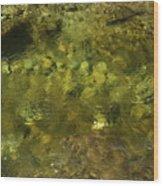 Adirondack Water Wood Print