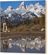 Admiring The Teton Sights Wood Print