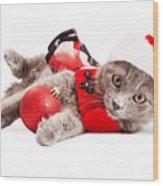 Adorable Christmas Kitten Over White Wood Print