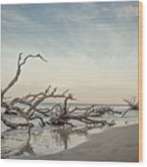 Adrift In The Golden Hour 3 Wood Print
