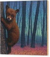 Adventurer Wood Print